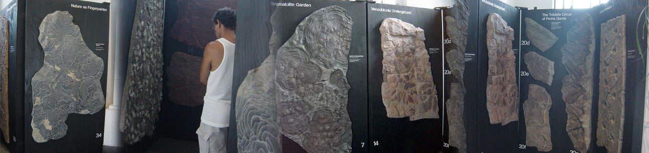 Arte Fóssil