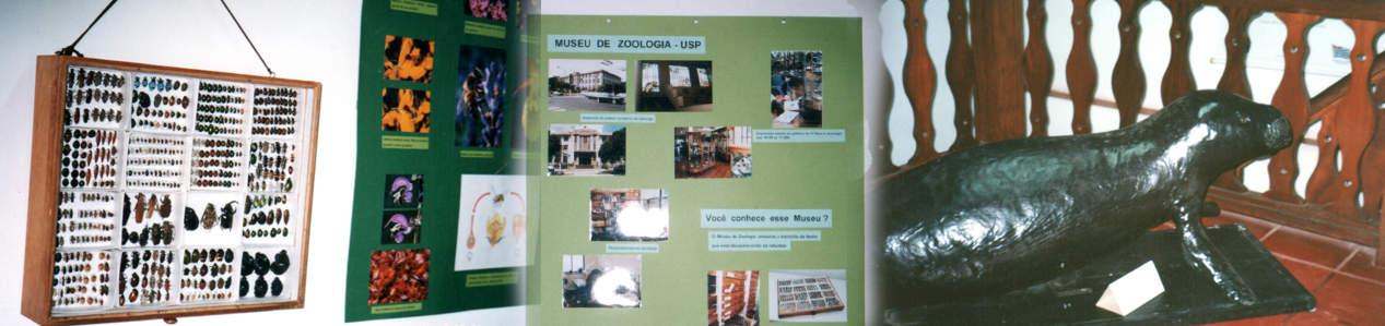Você conhece esse museu?